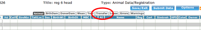 transfer tab.png