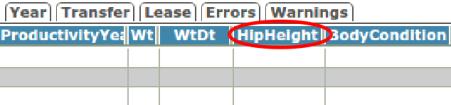 hipheight